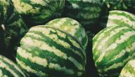 كيف تختار البطيخ