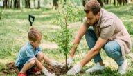 ما فائدة تشجيع النبي للصغار على العمل الحسن