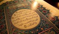 كم عدد كلمات القرآن الكريم؟