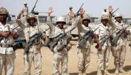 كم عدد افراد الجيش السعودي