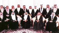 كم عدد ابناء الشيخ زايد