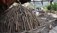 صناعة الفحم الخشبي