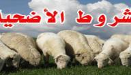 شروط الاضحية في الاسلام