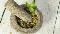 اعشاب لزيادة السائل المنوى عند الرجال
