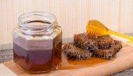 ما فوائد غذاء ملكات النحل مع العسل؟