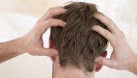 فوائد قمل الشعر