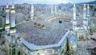 ما اثر حلم النبي في استجابة الناس لدعوة