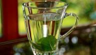 فوائد شاي النعناع للرجيم
