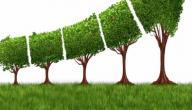 مفهوم الاستدامة
