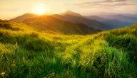 مفهوم الطبيعة فلسفيا