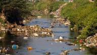 تلوث المياه: أسبابه وطرق الوقاية منه