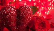 معلومات عن عيد الحب