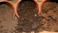 خصائص التربة الرملية