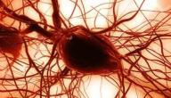 أضرار الخلايا الجذعية