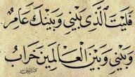 خصائص الشعر العربي القديم