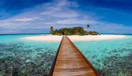ماهي جزر المالديف