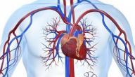 علاج ضيق شرايين القلب