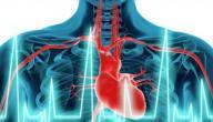 زيادة نبضات القلب بعد الاكل