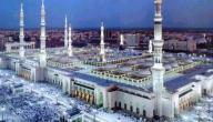 عدد ابناء الرسول محمد