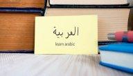تركيب الجملة في اللغة العربية