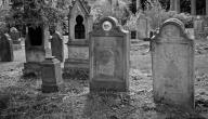 هل اهل القبور يتزاورون