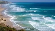 الفرق بين المحيط والبحر