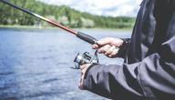 طريقة صيد السمك بالعجين