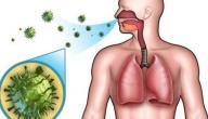 الجهاز التنفسي لدى الإنسان