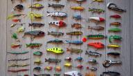 ما هو أفضل طعم لصيد السمك