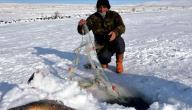 الصيد في كندا