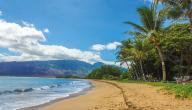 أين تقع جزيرة هاواي