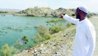 بحيرة المسك