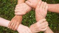 أثر التعاون في حياة الفرد والمجتمع