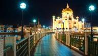الهجرة إلى جزيرة بروناي
