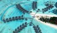 العمل في جزر المالديف
