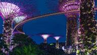 أسباب نهضة سنغافورة