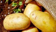 رجيم البطاطا: هل يساعدك على خسارة الوزن الزائد؟