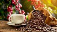 ما فوائد شرب القهوة قبل التمرين؟