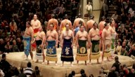 كل ما يخص رياضة السومو