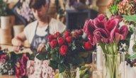 دليلك لتأسيس محل لبيع الورد الطبيعي