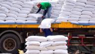 ما متطلبات العمل في تجارة الأرز؟