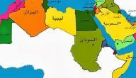 اكبر دولة عربية من حيث السكان