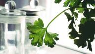 ازالة رائحة الفم الكريهة بالاعشاب