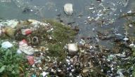 أسباب تلوث الماء ومخاطره