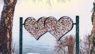 درجة الحب