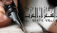 افضل الشعراء العرب على مر التاريخ