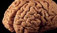 تمارين العقل الباطن
