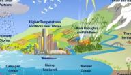 شرح دورة الماء في الطبيعة