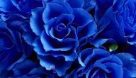 على ماذا يدل اللون الازرق