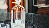 كيفية صنع قفص عصافير